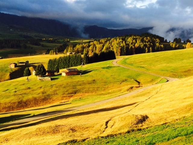 Nejkrásnější pastvina v Evropě