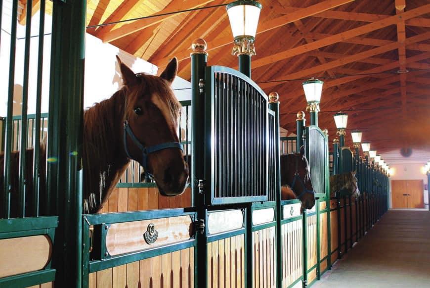 Hertelendy Kastély: koňské stáje