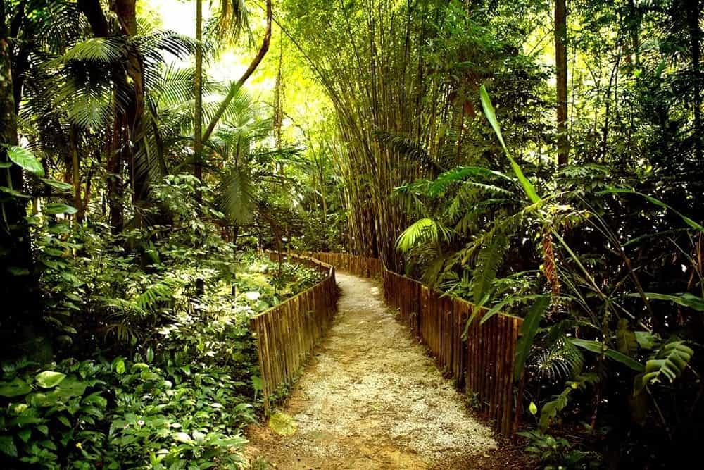 Palácio Tangará, Sao Paulo: zahrada jako amazonská džungle