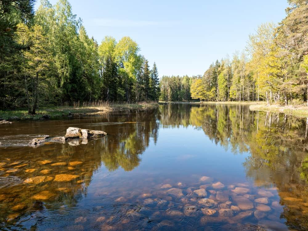 Švédsko - lososová řeka