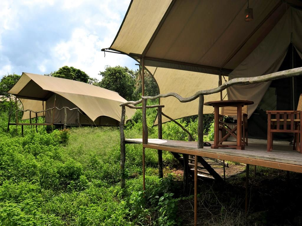 Galapagos Safari Camp, stany se kvůli výhledu skrývají v korunách stromů