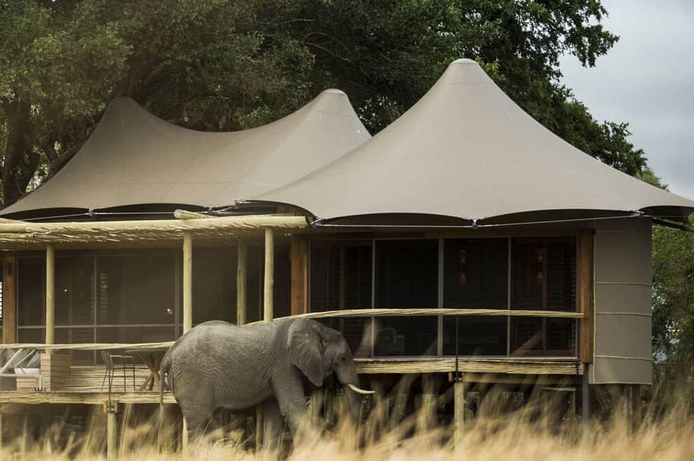 Little Mombo, Botswana: safari jak má být